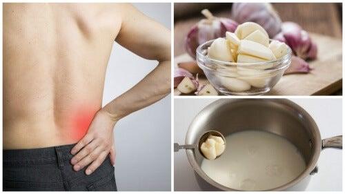 좌골신경통을 완화하는 마늘 우유