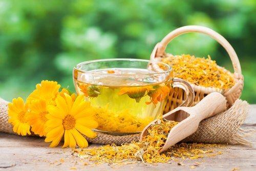 편두통은 자연 재료로 치료