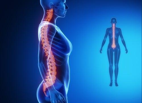 2분 만에 척추 스트레칭을 하는 방법
