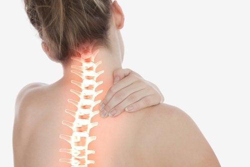 척추 건강