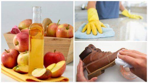 집에서 사과식초를 활용하는 7가지 방법