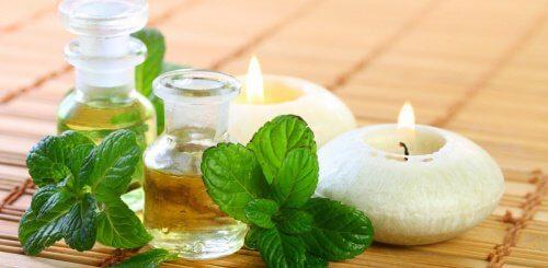 건강을 위한 민트 오일을 만드는 방법