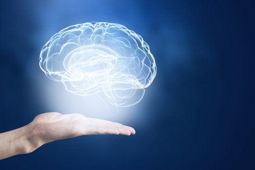 기억력을 증진하기 위한 완벽한 방법