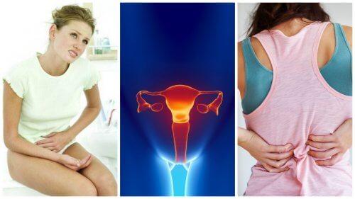 자궁경부암의 8가지 주요 증상