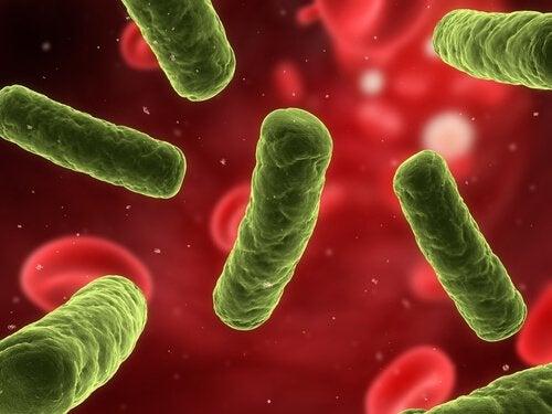 질염 예방을 위한 9단계 생활수칙