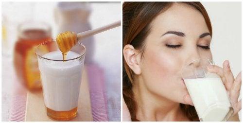 자기 전 꿀과 우유 한 잔을 마셔야 하는 7가지 이유
