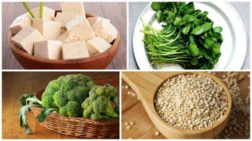 식단에 추가하면 좋은 식물 단백질 식품 8가지
