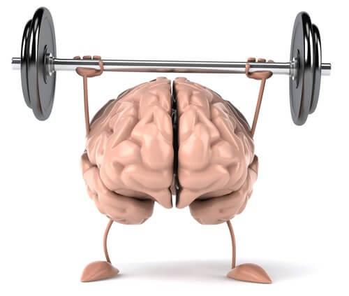 건강한 뇌를 위한 팁