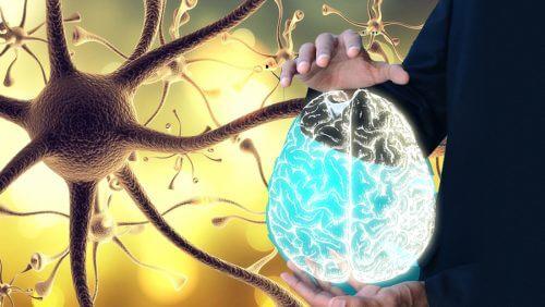 건강을 위해 미주 신경을 깨우는 방법