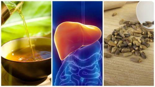 지방간을 치료하는 6가지 대체 요법