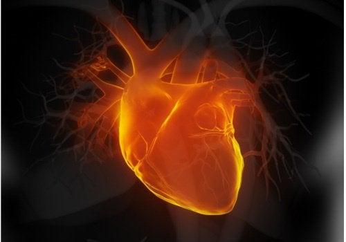 심부전의 초기 증상 6가지