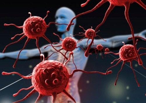 면역력 강화
