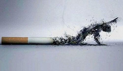 금연이 외모를 개선해주는 5가지 방법