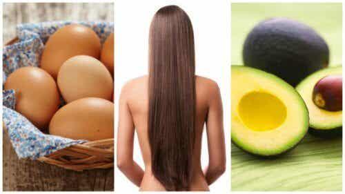 머리카락을 빨리 자라게 해 주는 8가지 식품