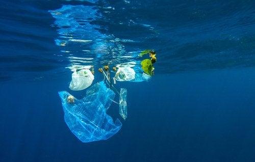 플라스틱은 바다