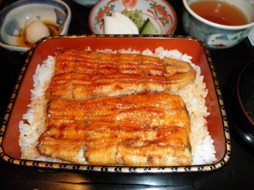 우리가 피해야 할, 몸에 안 좋은 생선 9가지 장어