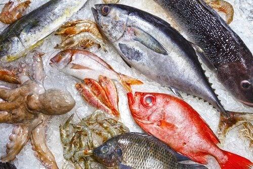 우리가 피해야 할, 몸에 안 좋은 생선 9가지