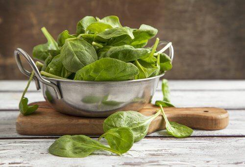 단백질 섭취 시금치