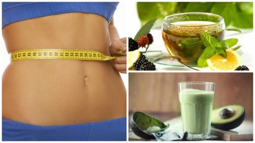 체중 감량을 위해 녹차를 마시는 4가지 방법