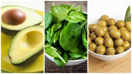 비타민 E를 제공하는 식품 6가지
