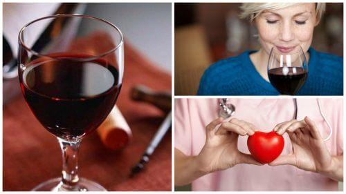 레드 와인의 10가지 효능
