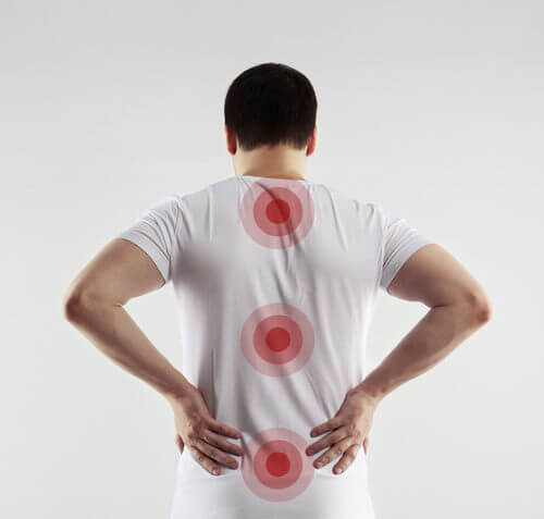 마이크로파이버가 척추 복원에 도움이 될 수 있다는 새로운 연구