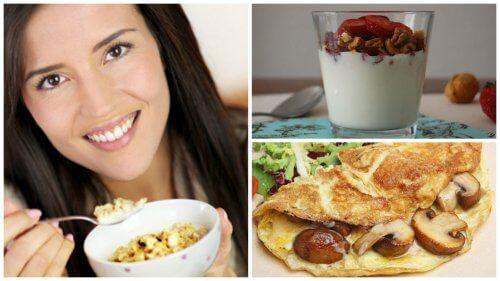 고단백 아침 식사로 여는 활기찬 하루