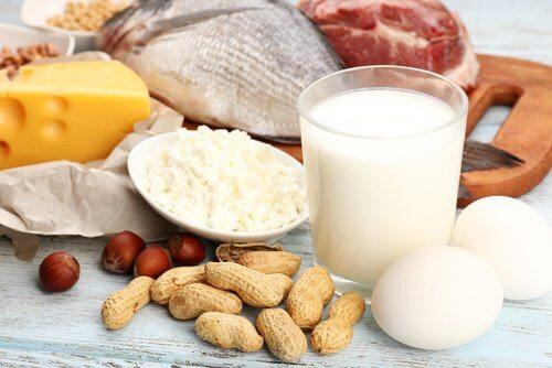 의외로 단백질이 풍부한 식품 5가지