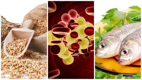 콜레스테롤을 조절하기 위해 식단에 포함해야 할 7가지 식품