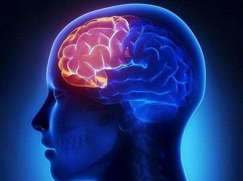 뇌의 노화를 늦추는 4가지 훈련법