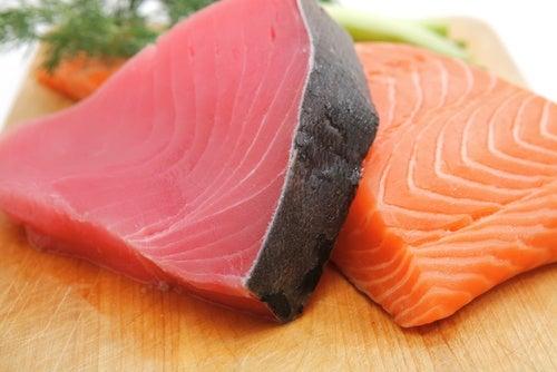 연어와 참치 건강한 두뇌를 위한 식품