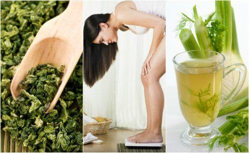 다이어트에 도움이 되는 허브 5가지