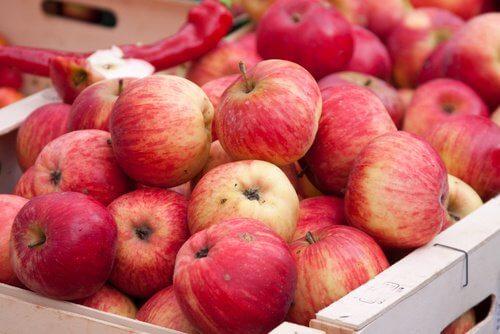 사과 간 건강