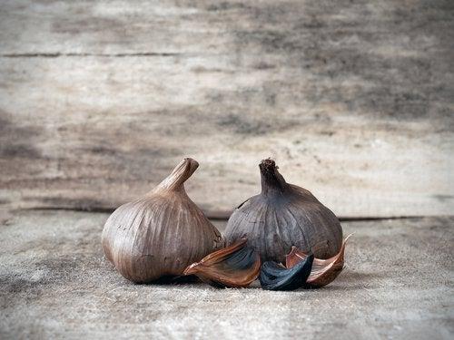 흑마늘의 면역체계