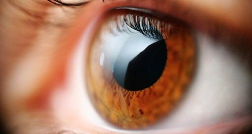 눈이 몸에 대해 알려주는 5가지