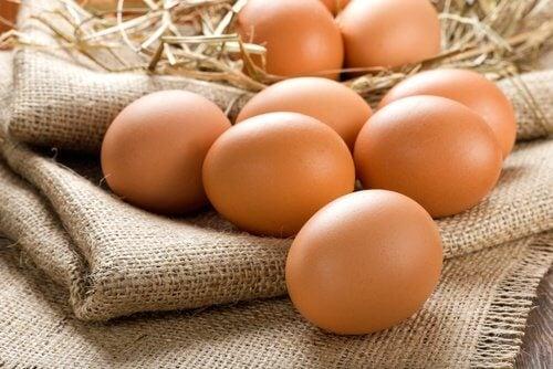 빈혈 완화에 달걀