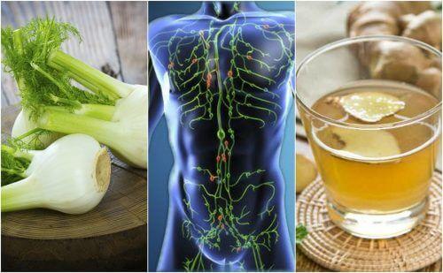 림프계를 청소해주는 6가지 자연 요법