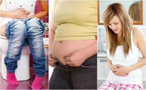 체중을 증가시킬 수 있는 소화 장애