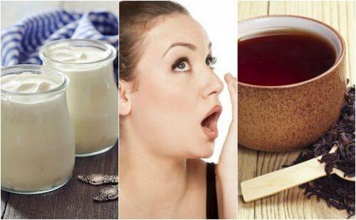 입 냄새를 없애주는 7가지 음료