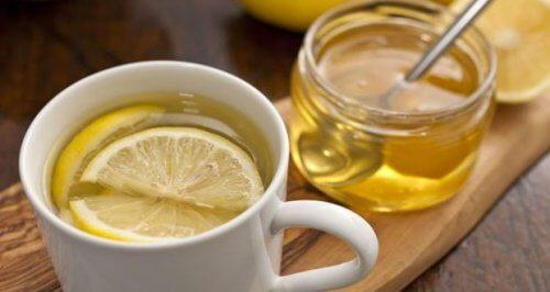 꿀 레몬 차