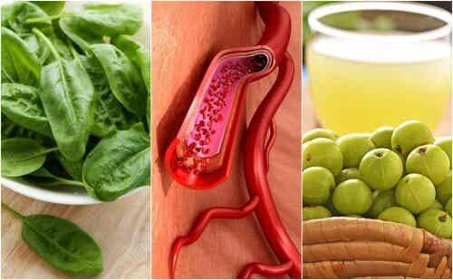 혈소판을 증가시키는 식품 7가지