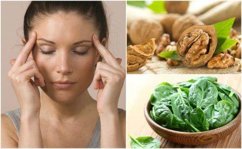 대뇌 활동성을 강화하는 7가지 식품