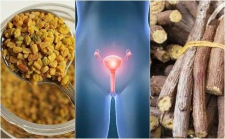 다낭성 난소 질환에 도움이 되는 5가지 자연요법