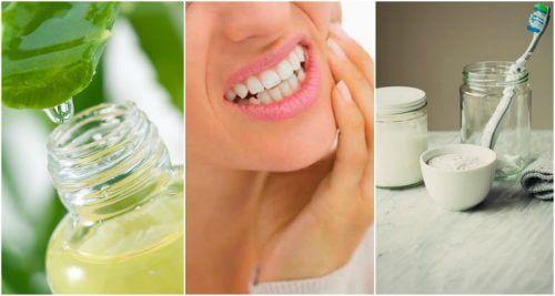 치은염을 치료하는 자연 요법 6가지