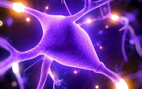 마그네슘이 정신 건강에 도움 되는 5가지 이유