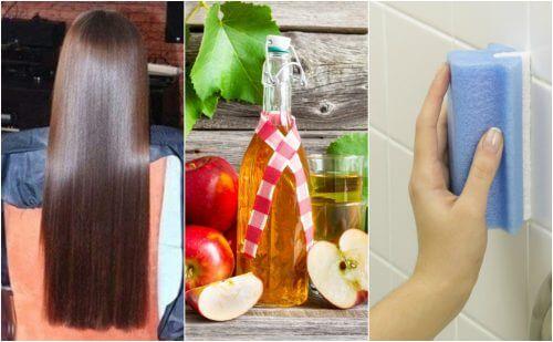 애플 사이다 식초의 특이한 활용법 5가지