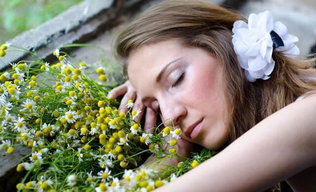 집에서 식물을 키우는 것의 7가지 이점: 소음 감소