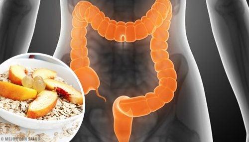 과민대장증후군 치료를 위한 음식