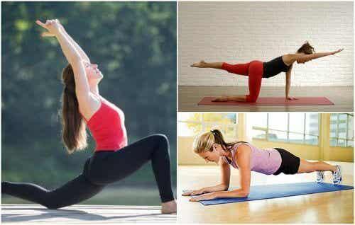 허리 강화에 가장 효과적인 5가지 운동