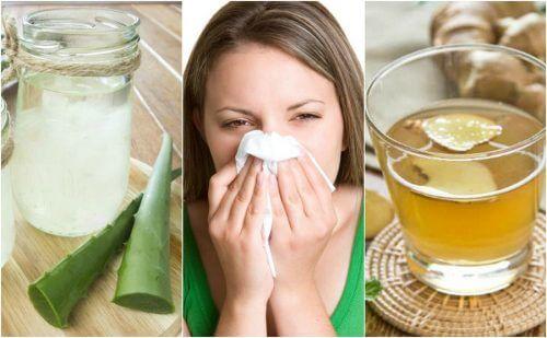 알레르기성 비염을 위한 자연 요법 5가지